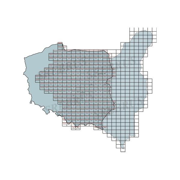 1919 1939 Polska Wig 100 Topograf